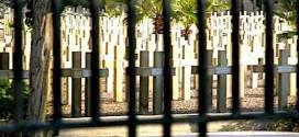 المقبرة الفرنسية - جمال منصور